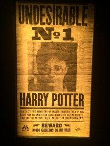 wanted_harry_potter