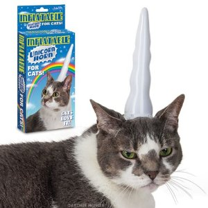 unicorn cat